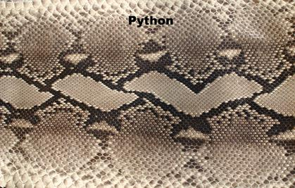 Python In Many Colours